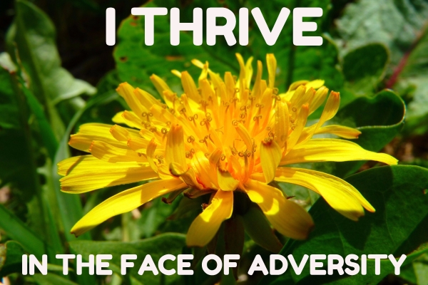 I Thrive in the Face of Adversity