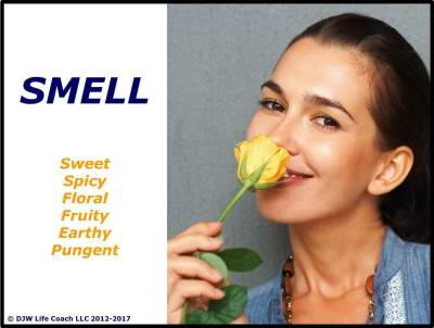 Sense of smell is the mind-body interface