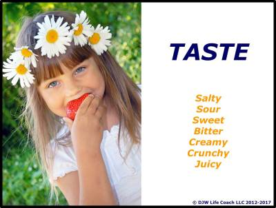 Our sense of taste adds zing to our days!